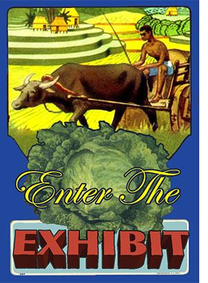 Enter Exhibit