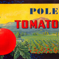Pole Tomatoes Packing Label